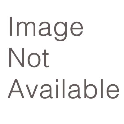 Pica New 2016 Logo